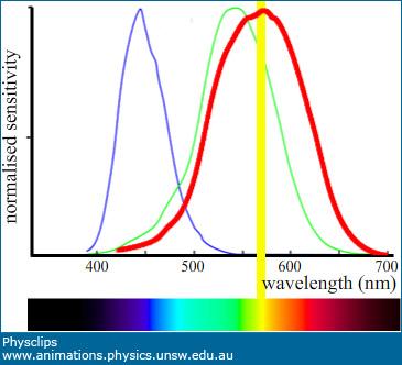 Human Three Colour Vision